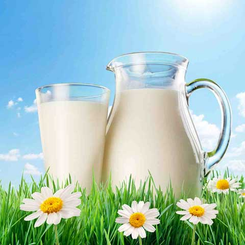 Milk, nonfat, fluid, with added vitamin A and vitamin D (fat free or skim)