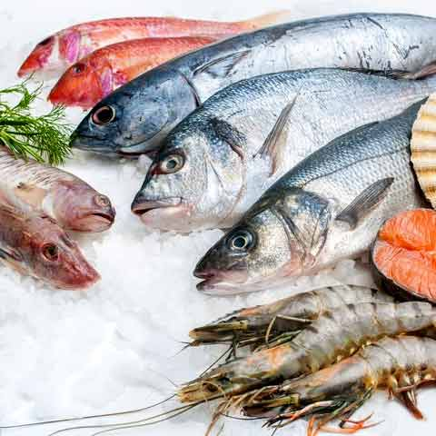 Finfish and Shellfish Products